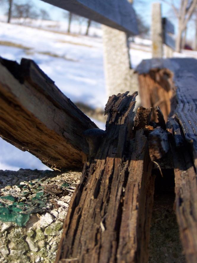 Broken Bench 2