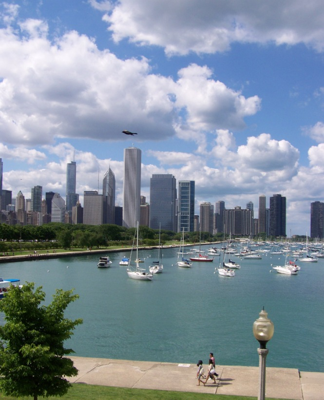 Chicago from Shedd (Bird)