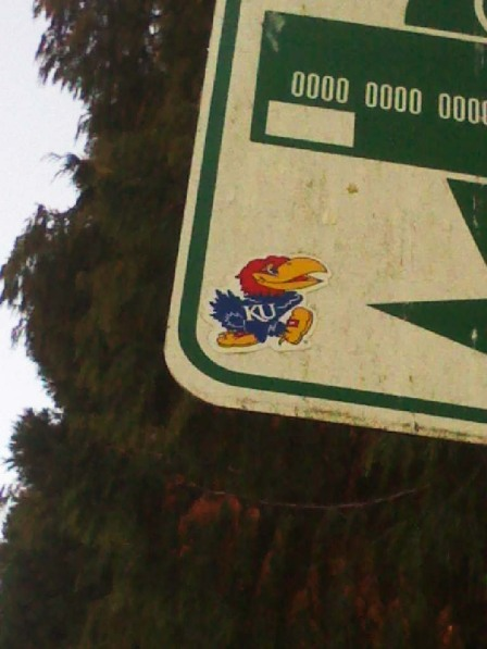Jayhawk in Seattle