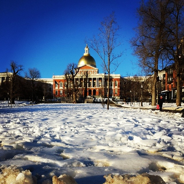 State House Snow
