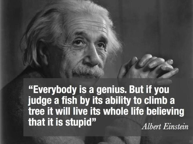 Einstein Genius Fake Quote