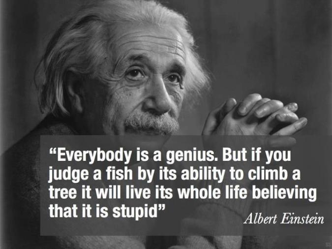 Einstein Genius Fake Quote