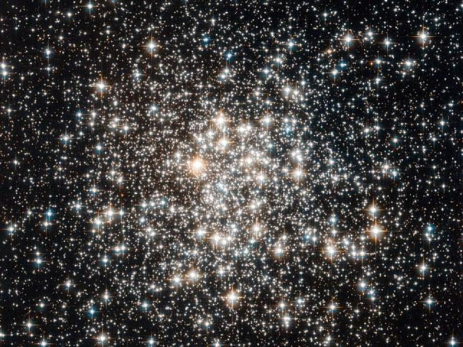 Field of Stars
