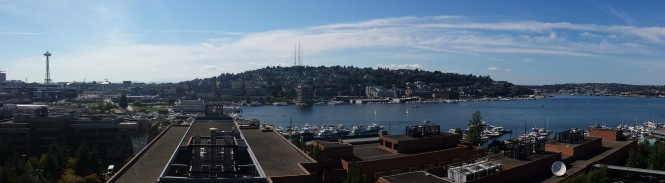 Lake Union Pana