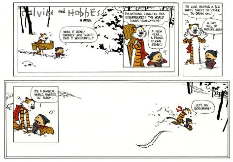 Exploring - Calvin and Hobbes