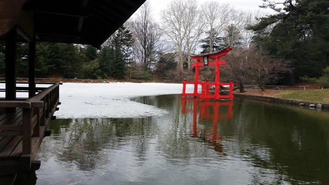 Japanese Ice