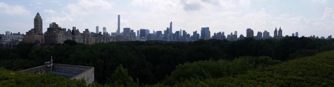Manhattan Skyline (from the Met) Pana