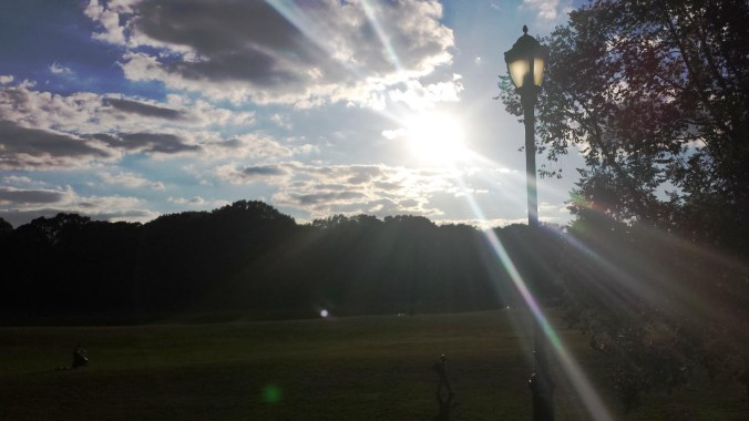 Prospect Park Flare 2