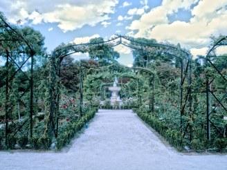 La rosaleda del retiro